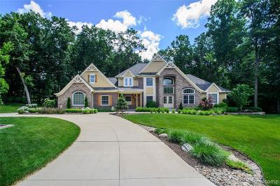 Brighton Single Family Home For Sale: 2699 Toby Dr