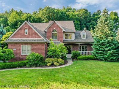 Novi Single Family Home For Sale: 30377 Balfour Dr
