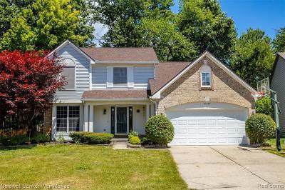 Novi Single Family Home For Sale: 47298 Scarlet Dr N