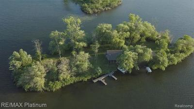 Single Family Home For Sale: Crooked Lake Island