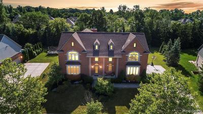 Canton Single Family Home For Sale: 1550 Centennial Dr