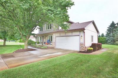 Wixom Single Family Home For Sale: 1024 N Sycamore Crt