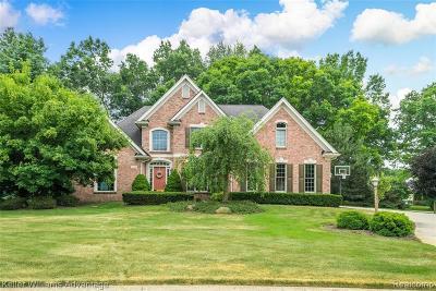 South Lyon Single Family Home For Sale: 13868 Bridgewater Crt