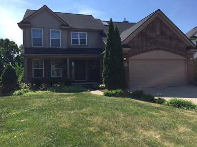 Ann Arbor Single Family Home For Sale: 1875 Harley Dr