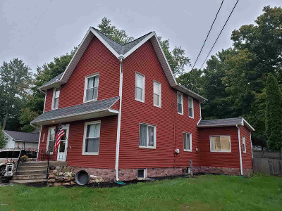 Lenawee County Single Family Home For Sale: 209 Oak St