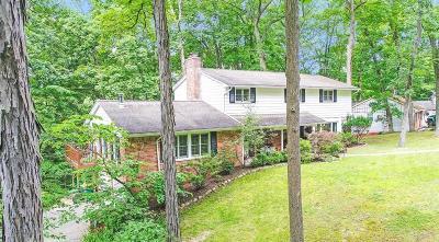 Ann Arbor Single Family Home For Sale: 4141 Woodland Dr