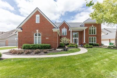 Novi Single Family Home For Sale: 24139 Broadmoor Park Blvd