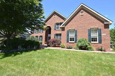 Novi Single Family Home For Sale: 47590 Aberdeen Dr
