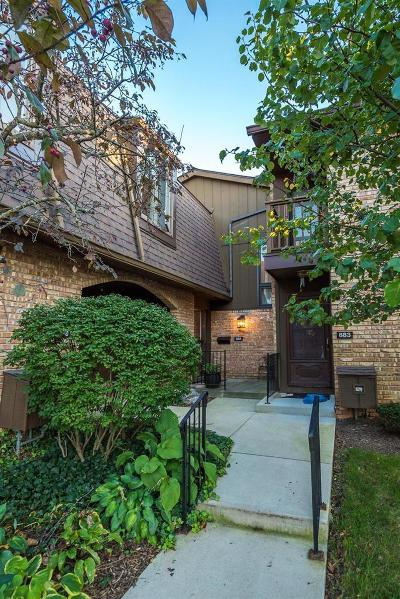Ann Arbor Condo/Townhouse For Sale: 881 Greenhills Dr