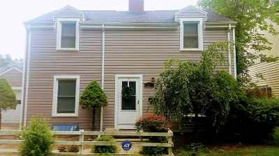 Lenawee County Single Family Home For Sale: 317 S Scott