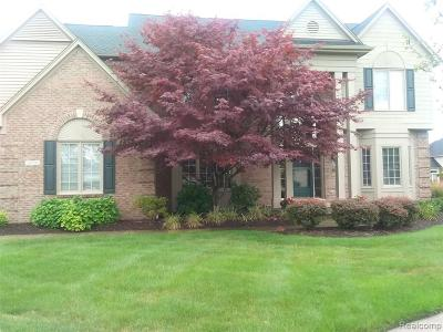 Canton Single Family Home For Sale: 47419 Wallingford Crt