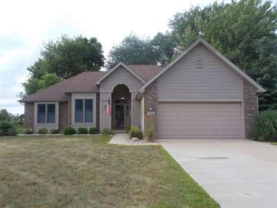Lenawee County Single Family Home For Sale: 411 W Caneel Drive