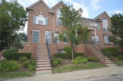 Northville Condo/Townhouse For Sale: 39633 Springwater Dr