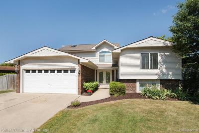 Canton Single Family Home For Sale: 44120 Fair Oaks Dr