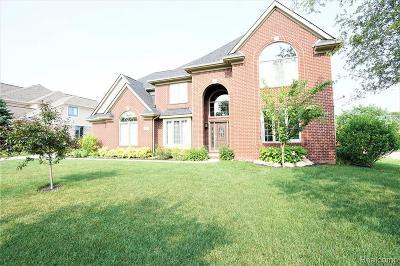 Farmington Hill Single Family Home For Sale: 22378 Diamond Crt