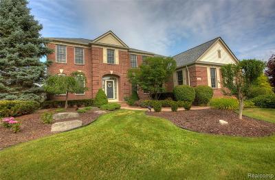 Canton Single Family Home For Sale: 560 Manhattan Crt