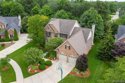 Novi Single Family Home For Sale: 41261 Scarborough Ln