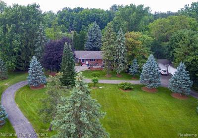 Livonia Single Family Home For Sale: 31610 Myrna St