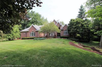 Novi Single Family Home For Sale: 47470 Edinborough Ln