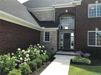 South Lyon Single Family Home For Sale: 23848 Enclave Dr