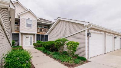 Ann Arbor Condo/Townhouse For Sale: 1525 Long Meadow Trl