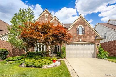 Northville Single Family Home For Sale: 16508 Mulberry Way