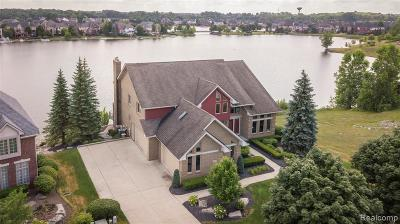 Northville Single Family Home For Sale: 18212 Parkshore Dr