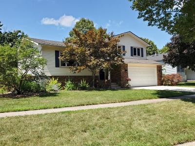 Chelsea Single Family Home Contingent - Financing: 41 Chestnut Dr