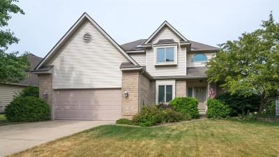 Brighton Single Family Home For Sale: 1008 Lincoln Dr