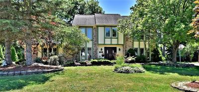 Farmington Hill Single Family Home For Sale: 39316 Plumbrook Dr