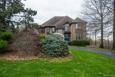 West Bloomfield Single Family Home For Sale: 6162 Wincliff