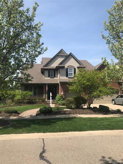 Northville Single Family Home For Sale: 50243 Livingston Dr
