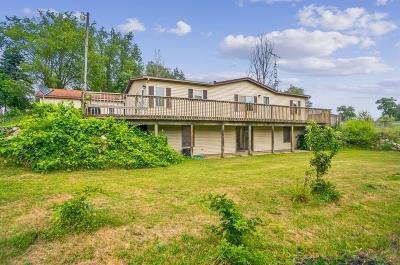 Chelsea Single Family Home For Sale: 4635 Loveland Road