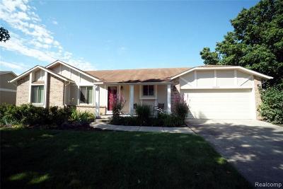 Novi Single Family Home For Sale: 22469 Mill Rd