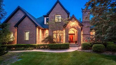 Ann Arbor Single Family Home For Sale: 9 Ridgemor Dr