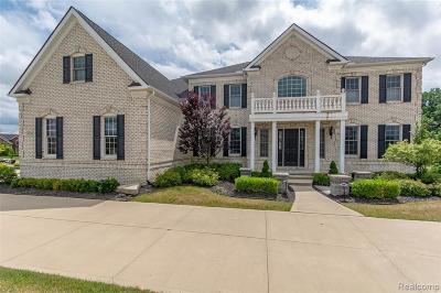 Northville Single Family Home For Sale: 50745 Briar Ridge Ln