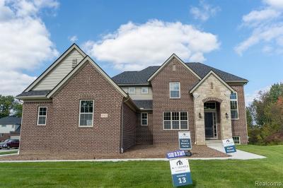 Novi Single Family Home For Sale: 47622 Alpine Dr