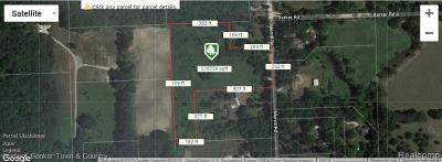 Whitmore Lake MI Residential Lots & Land For Sale: $170,000