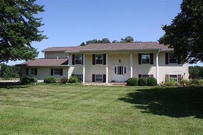 Ann Arbor Single Family Home For Sale: 7274 Musolf Ln