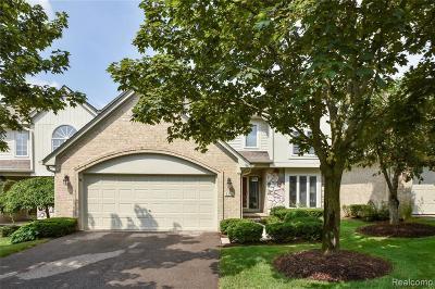 Northville Condo/Townhouse For Sale: 111 Hampton Crt