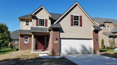 Southfield Single Family Home For Sale: 24697 Pembrooke Dr
