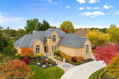 Novi Single Family Home For Sale: 21987 Worcester Dr