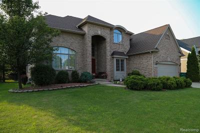 Novi Single Family Home For Sale: 31113 Bancroft Dr