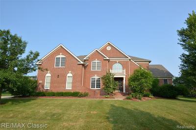 Novi Single Family Home For Sale: 25020 Hadlock Dr