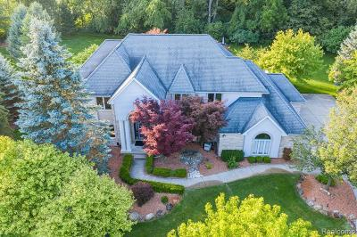 Novi Single Family Home For Sale: 47756 Rochester Dr
