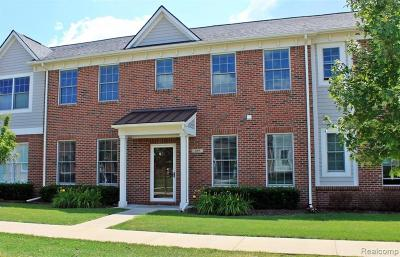 Plymouth Condo/Townhouse For Sale: 369 Daisy Square Pkwy