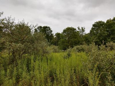 Chelsea MI Residential Lots & Land For Sale: $169,500