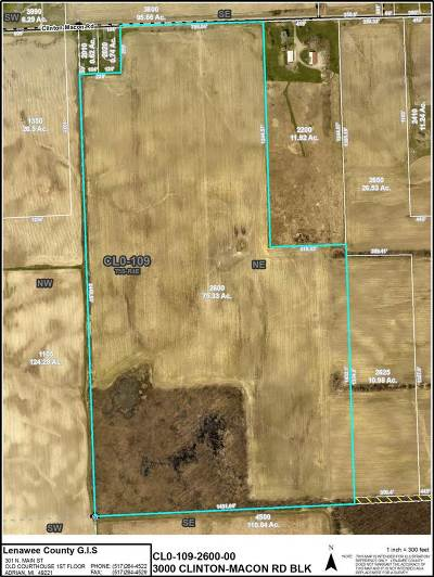 Jackson County, Lenawee County, Hillsdale County, Washtenaw County Residential Lots & Land For Sale: 3000 Clinton-Macon Rd