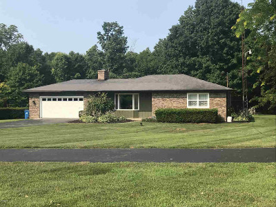 Reading MI Single Family Home For Sale: $295,000