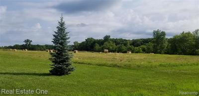 Jackson County, Lenawee County, Hillsdale County, Washtenaw County Residential Lots & Land For Sale: Plymouth-Ann Arbor Rd